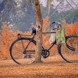 park and cycle  by Sameer Agnihotri - City,  Street & Park  City Parks ( cycle, park, autumn, cycle in park, autumn colors, object )