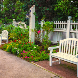 Grand Park by James Kirk - City,  Street & Park  Historic Districts ( benches, park, garden )