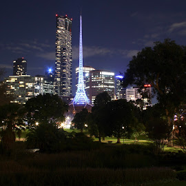 Light & Darkness by Nelson da Fonte - City,  Street & Park  Night ( skyline, sky, melbourne, trees, city )