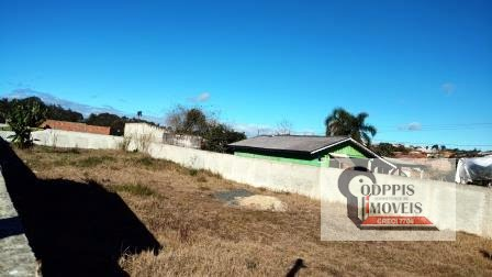 terrenos para comprar em araucaria campinadabarra