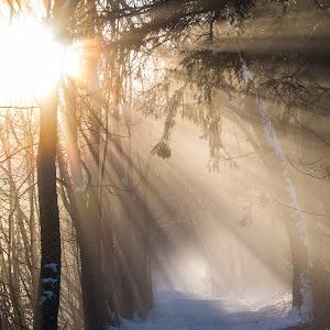 Chamonix Mist-2.jpg