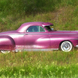 A beautiful car by Allan Wallberg - Transportation Automobiles ( car, old, beautiful, usa )
