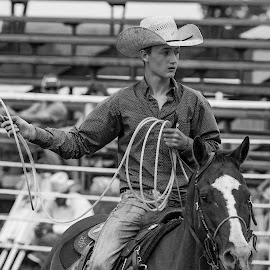 The Cowboy by Kevin Esterline - Sports & Fitness Rodeo/Bull Riding ( horse, cowboy, rope, hat, rodeo, ride,  )