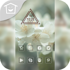 White flowers blooming theme
