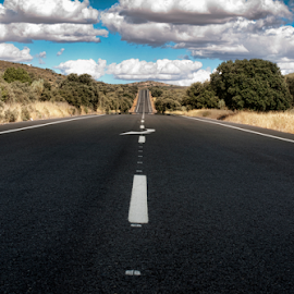 Asphalt road and white line marking by Deyan Georgiev - Transportation Automobiles ( curve, countryside, nobody, europe, freedom, direction, land, line, way, travel, road, transportation, long, landscape, lane, sky, nature, transport, drive, empty, perspective, trip, motion, black, clouds, asphalt, speed, green, horizon, journey, tourism, scenic, roadside, rural, roadway, destination, country, field, traffic, blue, route, outdoor, cloud, auto, scene, summer, view, freeway )