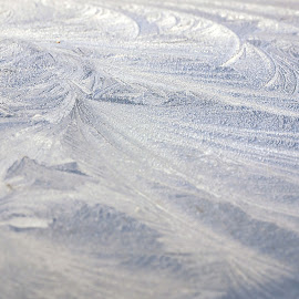 Frost Patterns by Zoot The-Tog - Abstract Patterns ( patterns, nature, cold, swirl, white, frost )