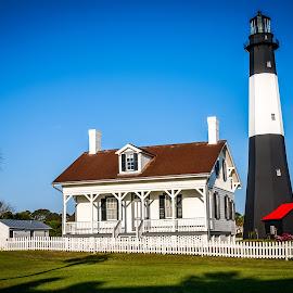 Tybee Island Lighthouse by Liam Douglas - Digital Art Places ( shore, signaling, lighthouse, sea, ships, light, warning )