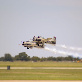 Up by Dario Riano - Transportation Airplanes ( army, flying, danger, precision, airplanes, pair, departure, show, transportation, smoke, air show )