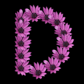 Alphabet - D by Dipali S - Typography Single Letters ( optical, optics, illustration, motivation, daisy, type, decor, inspiration, nature, calligraphy, card, place, flower, template, element, text, creative, letter, font, art, label, calligraphic, sign, frame, poster, word, typography, letters, headline, graphic, ornate, decorative, dew, captioned, title, words, quote, inscription, rain, classic, note, banner, typographic, abstract, icon, d, purple, vintage, decoration, advertisement, photo, purple flower, message, motivational, typo, background, artistic, drops, design )