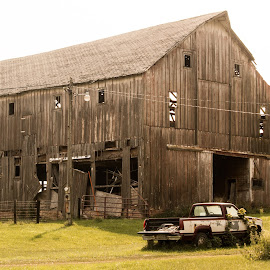 Old Truck and Barn by Bee Klemzak - Buildings & Architecture Decaying & Abandoned ( another era, dilapidated, old barn, old building, farming )