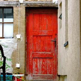 Die rote Tür by Art Blum - Buildings & Architecture Architectural Detail ( old, red, damp, kronberg, moss, door, germany, back door, decaying )