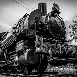 Iron horse by Maurizio Riccio - Transportation Trains ( steam engine, b&w, rail, train, transportation )