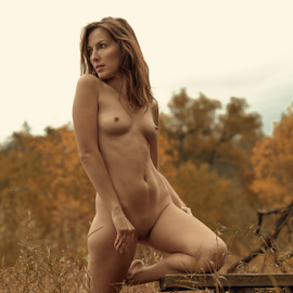 Mood of autumn by Dmitry Laudin - Nudes & Boudoir Artistic Nude ( beautiful, figure, nature, grass, nude, autumn, girl )