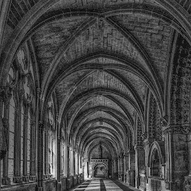 Claustro by Jose Maria Vidal Sanz - Black & White Buildings & Architecture ( arches, monastery, claustro, architecture )