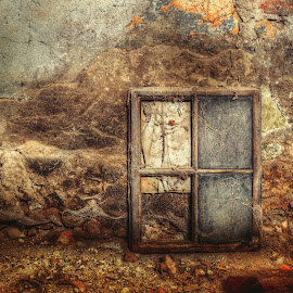 Forgotten window by Klaus Müller - Artistic Objects Still Life ( urbex, window, abandoned )