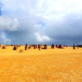 Australian desert by Camilla Uddgren - Landscapes Deserts ( skyline, sky, desert, australia, stones, sun )