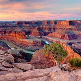 Colorado River From Dead Horse O'Look by Dale Kesel - Landscapes Deserts ( sky, desert, textures, red rock, land formations, southwest, sunrise, rock formation, landscape, river )