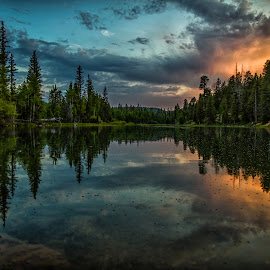 by Jeff Pedersen - Landscapes Forests