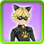 Dress up Cat Noir