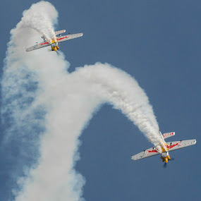Red Bull Matadors, Aerobatic Pair by Phil Clarkstone - Transportation Airplanes ( matadors, sukhoi, pair, loop, 26m, red bull, smoke )