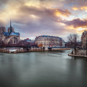 Notre Dame de Paris, France  by Jimmy Kohar - City,  Street & Park  Skylines