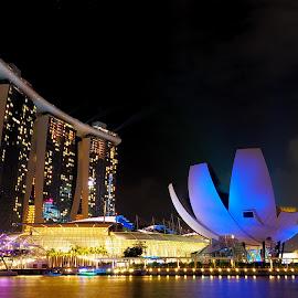 Singapore by Hilman Hendrayana - City,  Street & Park  City Parks ( #cityscapes, #singapore, #night_shoot, #amazing, #olympus )