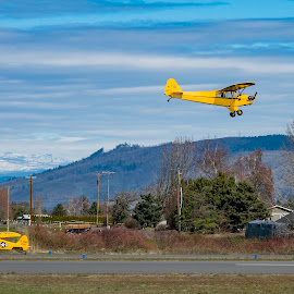 Flying a Classic 1941 Piper J3 Cub by Chris Bartell - Transportation Airplanes ( hood river, landscape, hood )