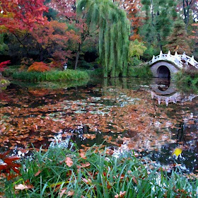 Herbst_2 Kopie.jpg