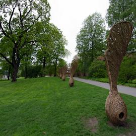by Kristinn Gudlaugsson - City,  Street & Park  City Parks