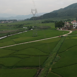 Chinese Village by Dennis  Ng - Landscapes Prairies, Meadows & Fields (  )