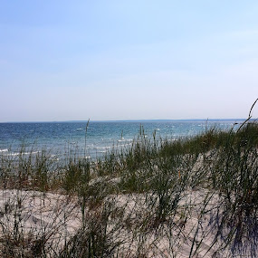 ÅHUS by Zoritza  Wejnfalk - Nature Up Close Sand ( sand, nature, åhus, sea, zoritza, zozo, photography, wejnfalk )