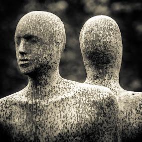 Twin skin by Hirian Raul - Artistic Objects Still Life