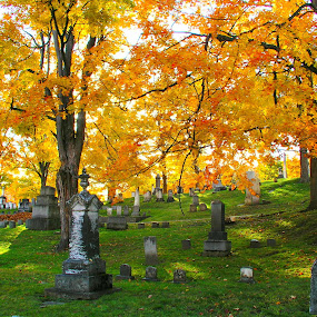 Peaceful Palmyra Cemetery by Rita Goebert - City,  Street & Park  Cemeteries ( autumn leaves; cemetery; historic tombstones; hillside; sunny afternoon;,  )
