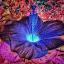 let it glow by Erl de Jose - Digital Art Things ( hibiscus, digital art, glowing, garden, flower )