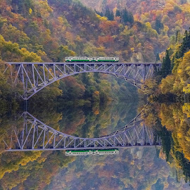 crossing the valley of autumn leaves by Nurul Anwar - Transportation Trains