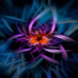 Water Lily by Steve Friedman - Abstract Patterns (  )