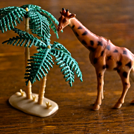 žirafa by Mario Denić - Artistic Objects Toys ( toy, giraffe, art, little, object )