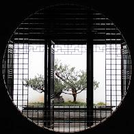 """相册""""[2011.01]_苏州""""的封面"""