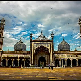 jama masjid by Baidyanath Arya - Buildings & Architecture Public & Historical ( jama masjid )