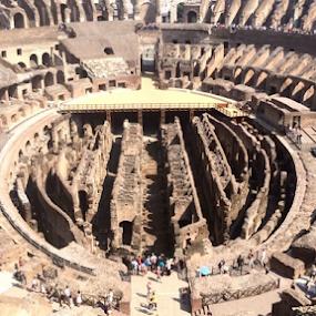 Roman Colosseum Revealed by Brianne Cronenwett - Buildings & Architecture Public & Historical ( history, colosseum, rome, travel, roman, italy )