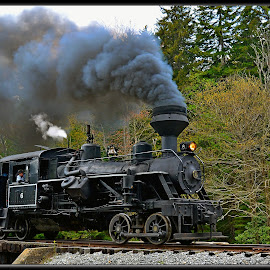 Cass scenic Railroad by Will Zook - Transportation Trains