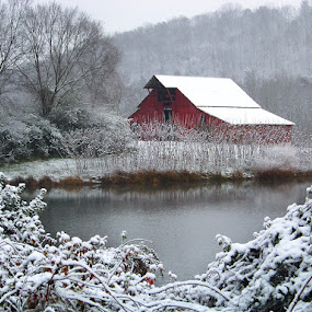 Winter Barn by Marylee Pope - Landscapes Weather ( winter, barn, snow, tennessee )