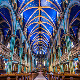 Bluest Blue by Roland Bast - Buildings & Architecture Places of Worship ( canada, church, blue, place of worship, architecture )