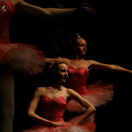 Sugar Plum Fairies by Rix Pix - Sports & Fitness Other Sports ( dancing, dancers, ballerinas, ballet, all that dance, ladies in red )