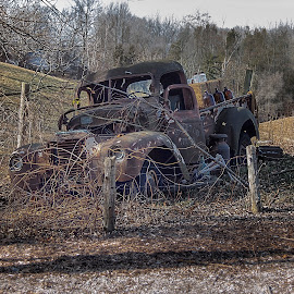 Still a Beauty by Nick Goetz - Transportation Automobiles ( pickup, truck, rusted, abandoned, country )