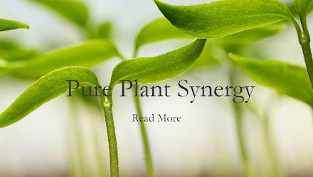 Mel Millis Pure Plant Synergy