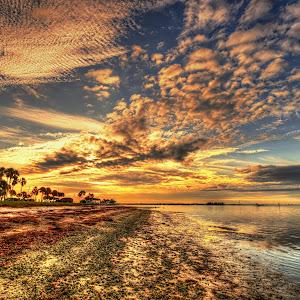SUN ISLAND #6 DONE.jpg