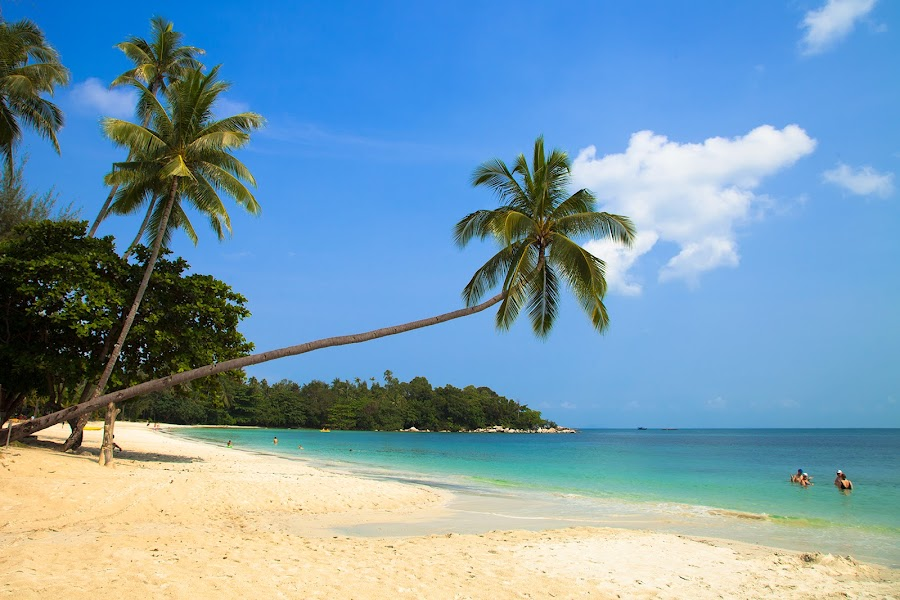 Bintan island by Johan Joe - Landscapes Beaches ( landscapes )