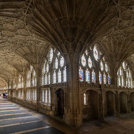 The Cloisters at Gloucester Cathedral. by Simon Page - Buildings & Architecture Places of Worship
