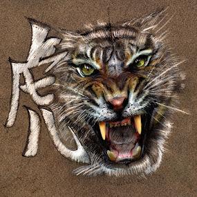 Tiger by Daliana Pacuraru - Drawing All Drawing ( year of the tiger, daliana pacuraru, tiger, drawing, chinese, eyes,  )